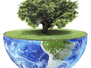 Eco concept.